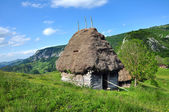 Wooden stable with thatched roof in the mountains — Stock Photo