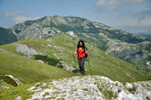 Trekking woman in the mountains — Stock Photo
