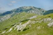 Limestone cliffs in Retezat mountain, Romania — Stock Photo