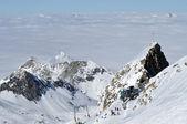 Skiers skiing on piste — Zdjęcie stockowe