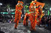 Dragon dance during the Tet Lunar New Year in Vietnam — Stock Photo