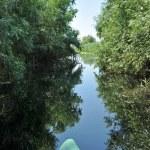 Canoeing in the Danube delta, Romania — Stock Photo #67568887