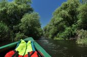 Exploring Danube delta with a boat — Stock Photo