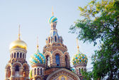 Church of the Savior on Spilled Blood. Saint-Petersburg, Russia. — Stok fotoğraf