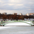 View of a bridge in Tsaritsyno park in Moscow — Stock Photo #64086389