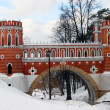 View of a bridge in Tsaritsyno park in Moscow — Stock Photo #64086915