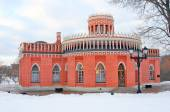 View of Tsaritsyno park in Moscow — Stock fotografie