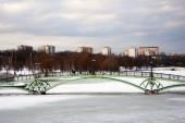 モスクワのレニノ公園の橋の眺め — ストック写真