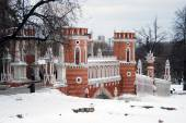 View of Tsaritsyno park in Moscow — Fotografia Stock