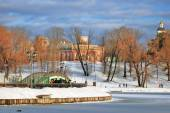 View of Tsaritsyno park in Moscow — 图库照片
