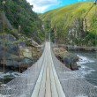 Bridge in Tsitsikamma national park — Stock Photo #53039565