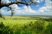 Paesaggio della savana africana — Foto Stock