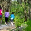 Family sport, happy active mother and kids jogging outdoors, running in forest — Stock fotografie #75103601