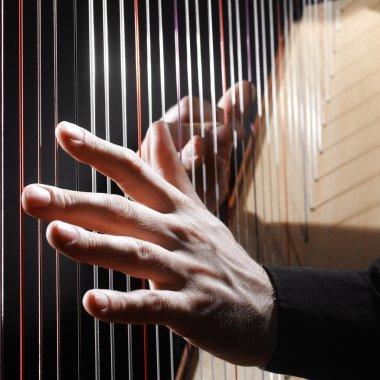 Harp strings closeup hands