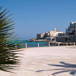 Old seaside town of Vieste in Puglia, Italy — Stock Photo #76516037