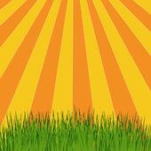 Sun rays vector — Stock Vector