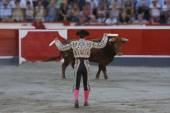 Placing flags bullfighter bull — Stock Photo