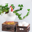 Sculpture of hen near  bio eggs in box — Stock Photo #62203047
