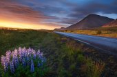Ring road around Iceland — Stock Photo