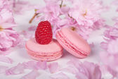 Traditional french macaroons — Stock Photo