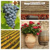 Chianti wine collage — Stock Photo