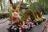 Flower dragon — Stock Photo