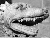 Mastiff dog - detail of statue — Stock Photo