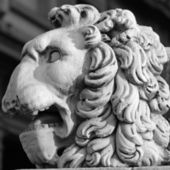 Lion head sculpture — Stock Photo