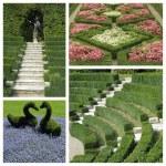 collage jardín italiano — Foto de Stock   #60453173