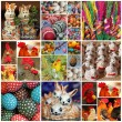 Collage of easter canvas — Stock Photo #66309237