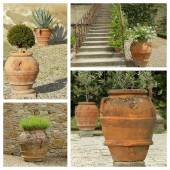 Garden planters collection — Foto Stock