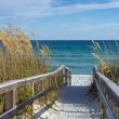 Beach Boardwalk with Dunes and Sea Oats — Stock Photo #52988921