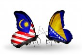 Butterflies with Malaysia and Bosnia and Herzegovina flags on wings — Foto Stock