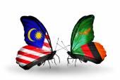Borboletas com bandeiras da malásia e zâmbia sobre asas — Fotografia Stock
