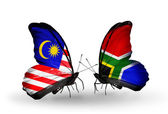 Butterflies with Malaysia and South Africa flags on wings — Stock Photo