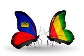 Butterflies with Liechtenstein and Guinea flags on wings — Stockfoto