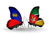 Papillons avec des drapeaux de Liechtenstein et le Mozambique sur les ailes — Photo