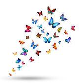 Flock of butterflies — Stock Photo