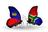 Butterflies with Liechtenstein and South Africa flags — Foto de Stock