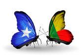 Butterflies with Somalia and Benin flags — Foto de Stock
