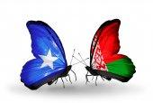 Butterflies with Somalia and Belarus flags — Foto de Stock