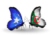 Butterflies with Somalia and Algeria flags — Foto de Stock