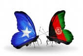 Butterflies with Somalia and Afghanistan flags — 图库照片