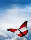 奥地利国旗蝴蝶 — 图库照片