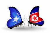 Butterflies with Somalia and North Korea flags — Stock Photo