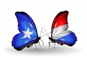 Butterflies with  Somalia and Luxembourg flags on wings — Foto de Stock