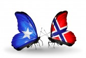 Butterflies with Somalia and Norway flags on wings — Foto Stock