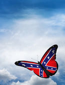 Confederate Rebel  flag butterfly — Stock Photo