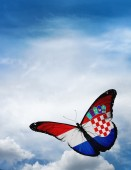 Croatia flag butterfly — ストック写真