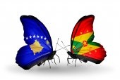 Butterflies with Kosovo and Grenada flags — Foto de Stock